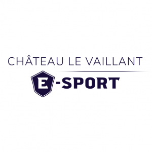Logo Chateau Vaillant esport